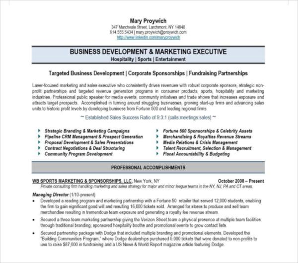 30 Printable Sales Resume Templates Pdf Doc Free