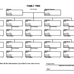 Easy Tree Diagram Worksheet Woody Dicot Stem Cross Section 11+ 10-generation Family Templates - Pdf | Free & Premium
