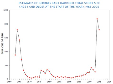 The Great Haddock Revival