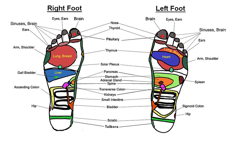 There are many incosistencies between published maps stacy simone also reflexology panacea or placebo rh theconversation