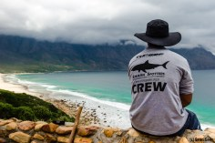 How Shark Spotting Can Help Reduce Attacks A Cape Town