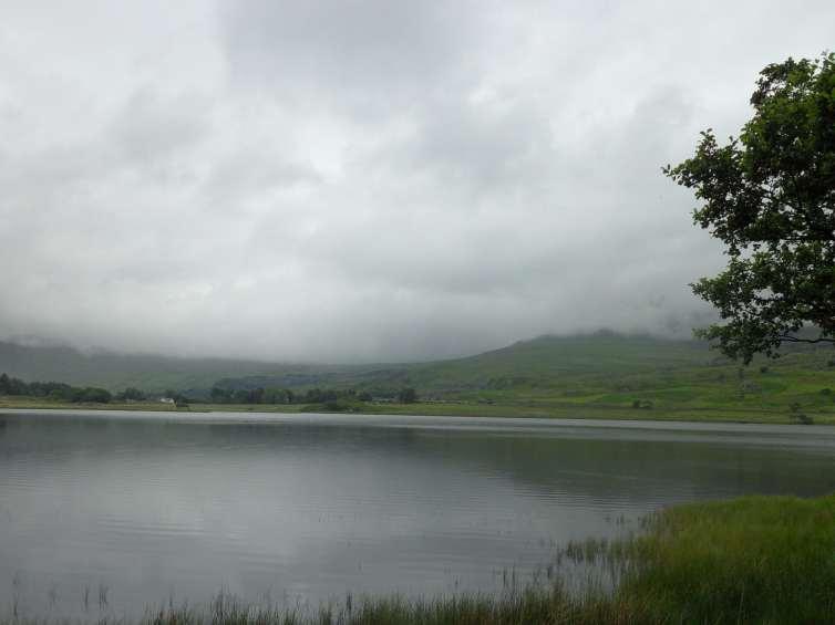 Stratus shrouds the sky - floating fog. (Hannah Christensen)