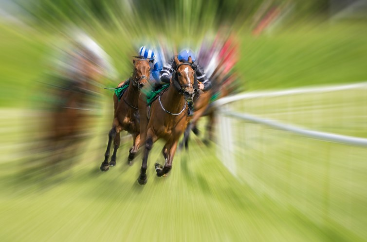 Violence towards animals can never be condoned, whether in horse racing or to animals in general. Shutterstock/gabriel