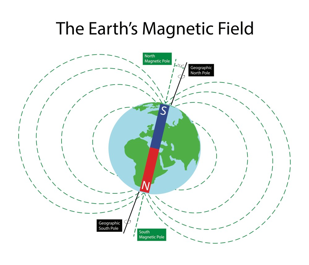 hight resolution of how does a biological geomagnetic sense work