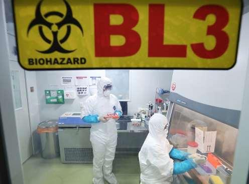 Mengenal pneumonia Wuhan, wabah penyakit baru dari Cina