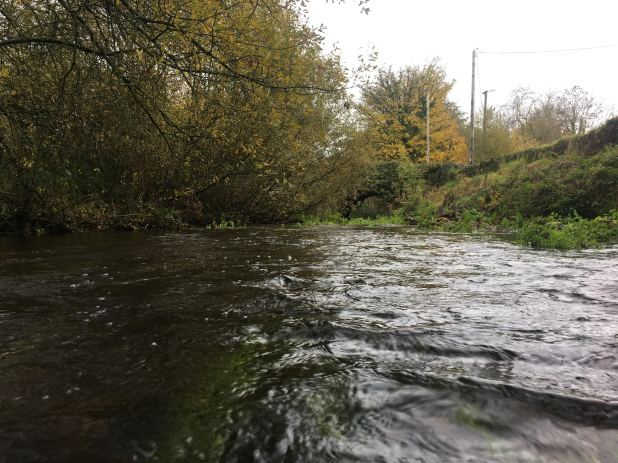 A stream with trees lining the bank