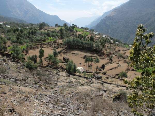 Dry paddy fields in Nepal