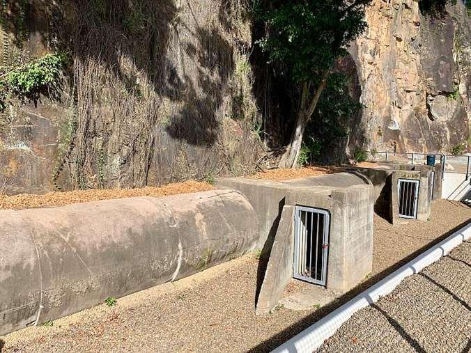 Entrances to air raid shelter at Howard Smith Wharves, Brisbane