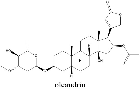 A drawing of the chemical structure of oleandrin.