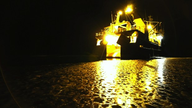 A large ship covered in yellow lights illuminates the icy water.
