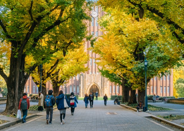 People walking down alleway lined with gingko trees towards university building.