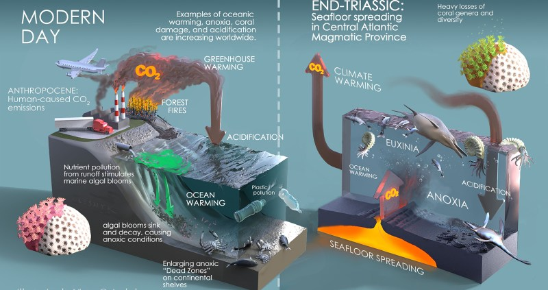 Schematic diagram of environmental changes