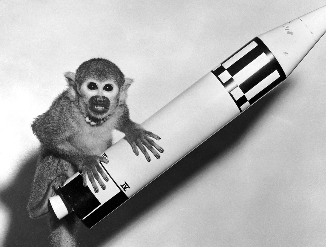 A squirrel monkey sits on top of a model rocket.
