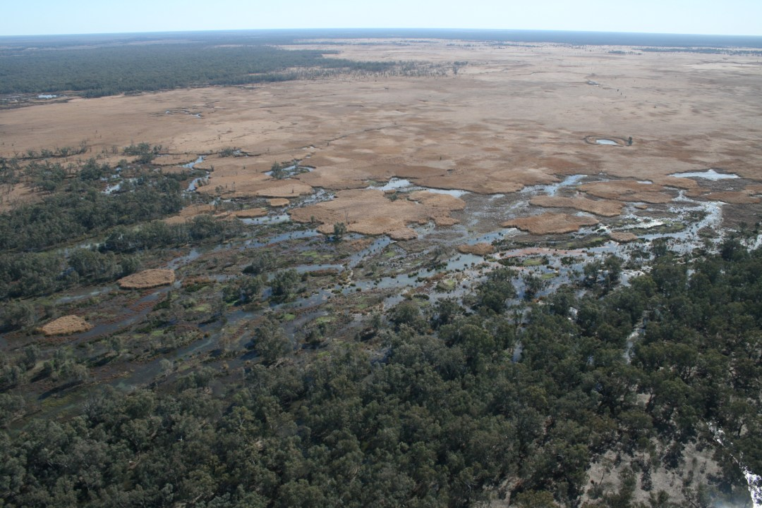 Paradox lost: Wetlands can form in Deserts An aerial view of a dry plain on one side and an expanse of green and damp habitat on the other.