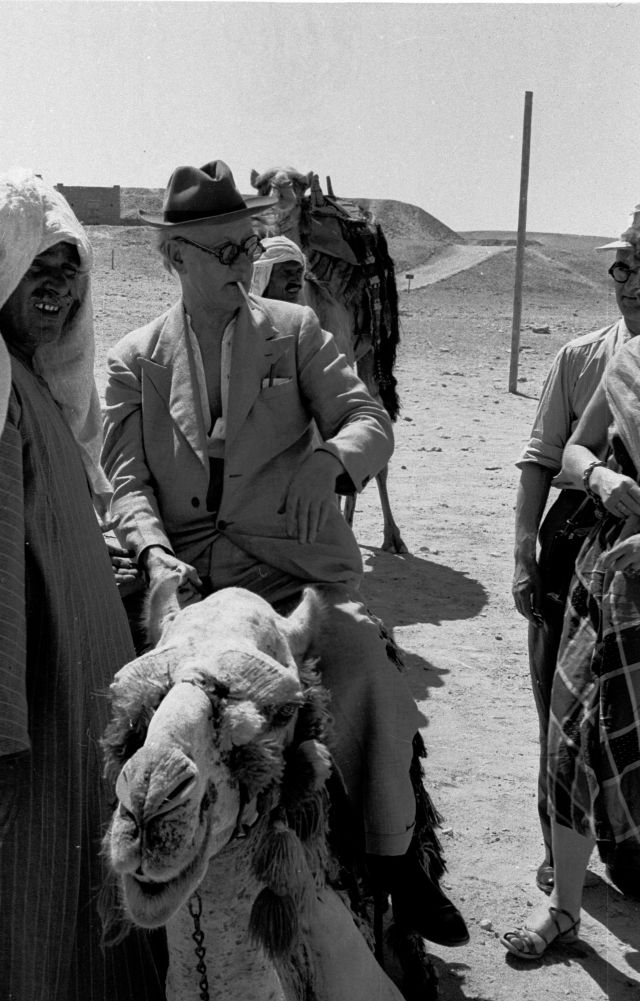 Man in sunglasses and hat sits on a camel