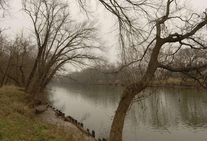 Bank of the Rappahannock River