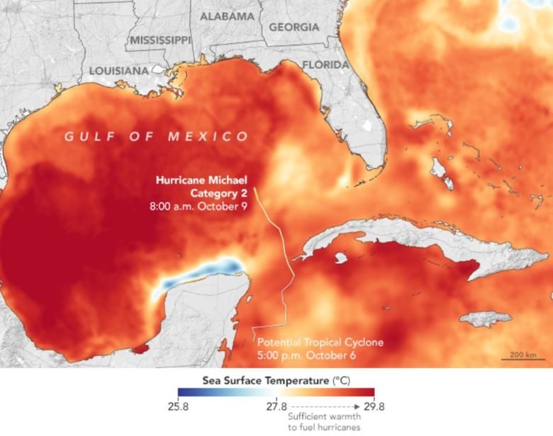 Sea surface temperature map of the Gulf of Mexico during in October 2018