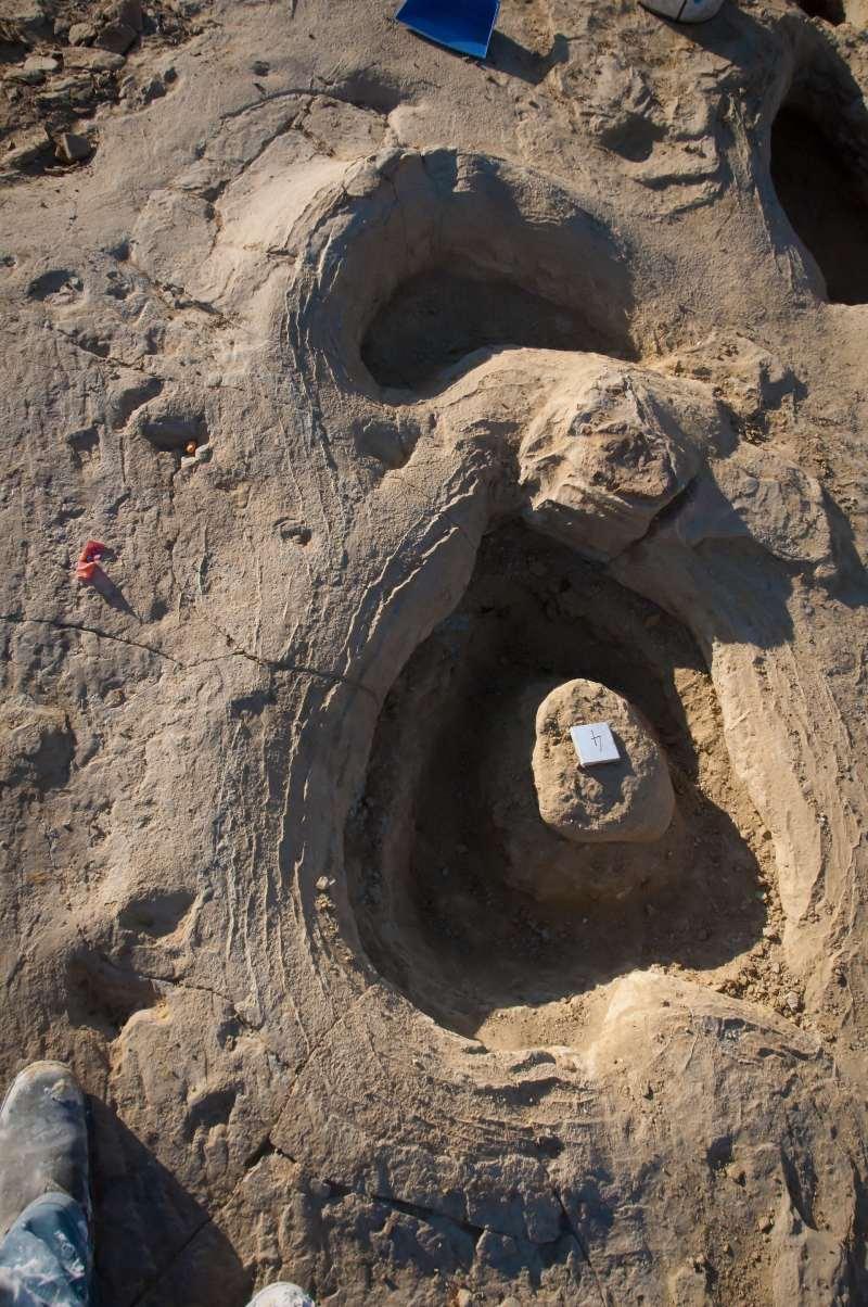 Sauropod footprints at the Snake Creek Tracksite.
