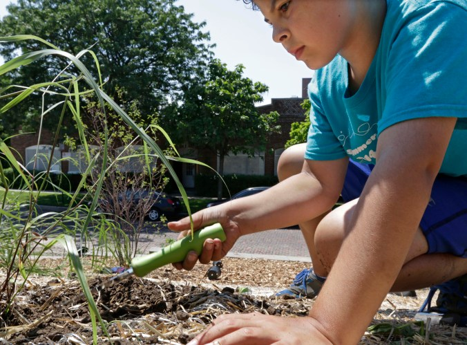 A child uses a spade to break up soil during a gardening exercise with the American Indian Center in Chicago.