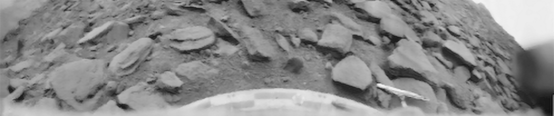 Black and white photo showing a rocky surface of Venus.
