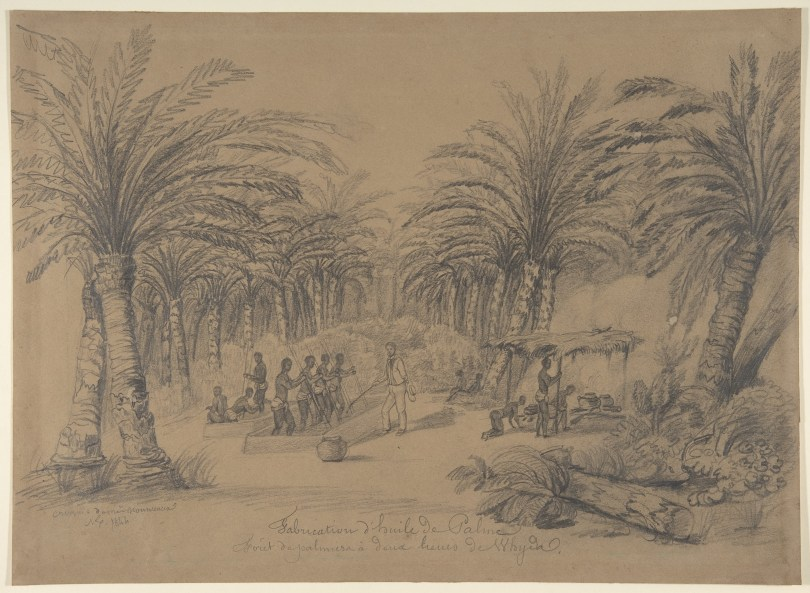 Sketch of men pounding oil palm fruit with sticks