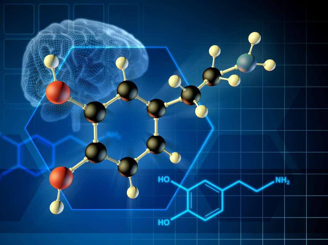 Dopamine molecule formula and 3D diagram.