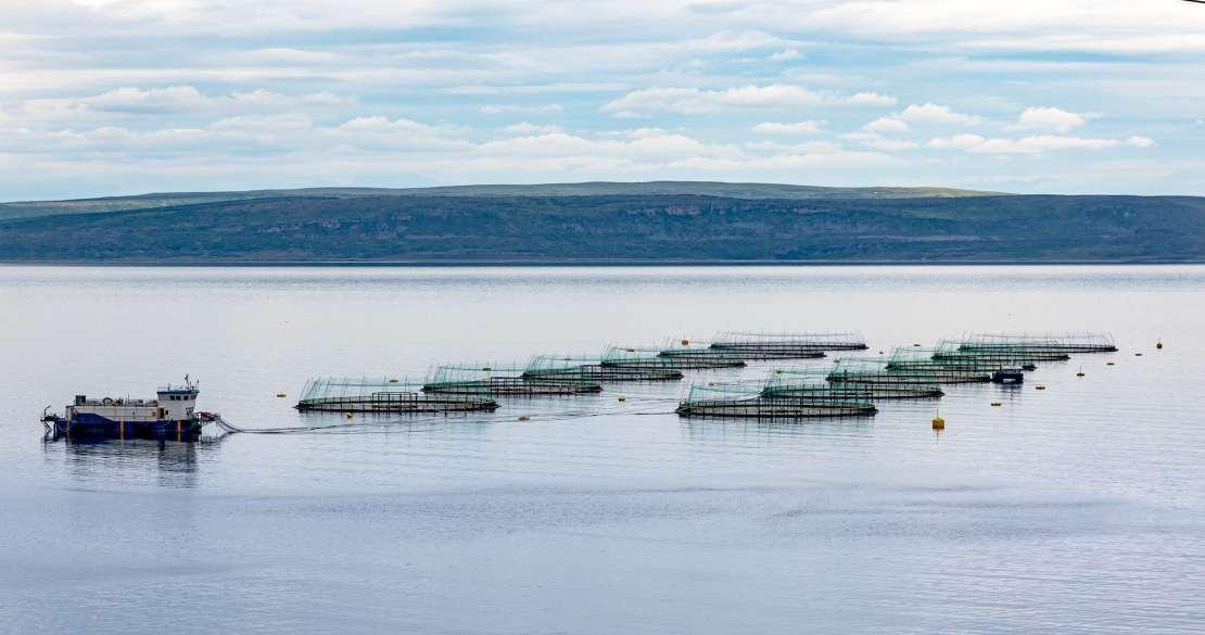 A fish farm in open water