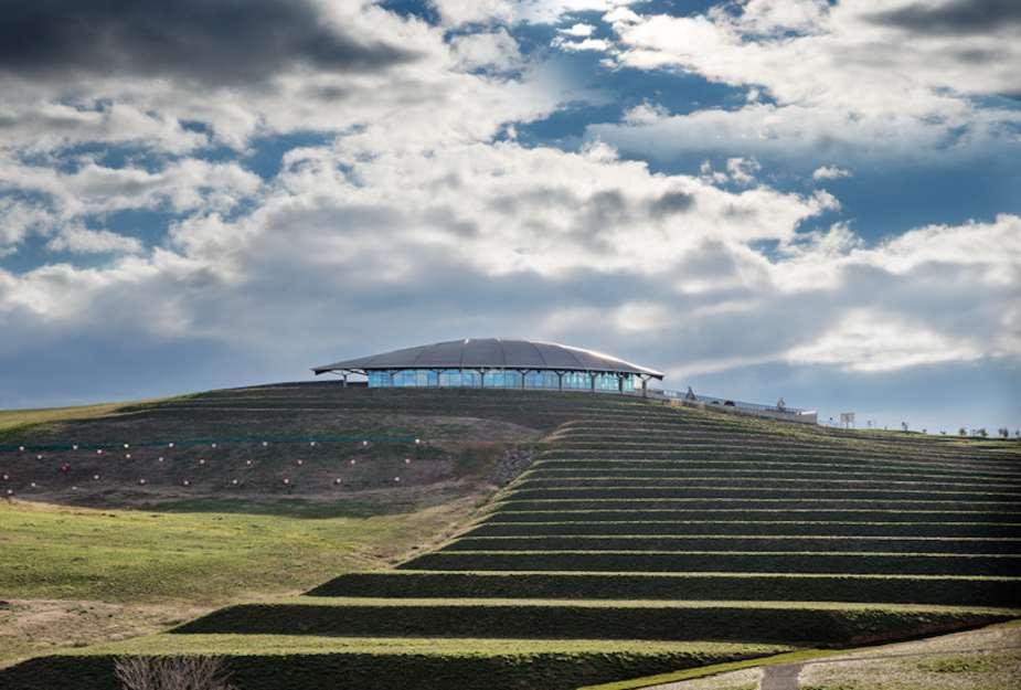 future forecasting landscape architects