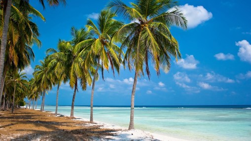 Airtel 4G Services in Lakshadweep Islands: Top 5 Places To Visit In Lakshadweep Islands