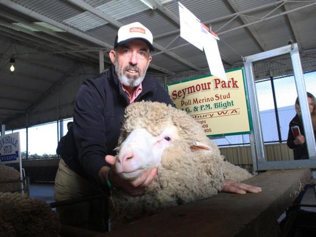 Elders WA wool and livestock manager Dean Hubbard says sheep demand from the east will put the WA flock under pressure to maintain numbers.