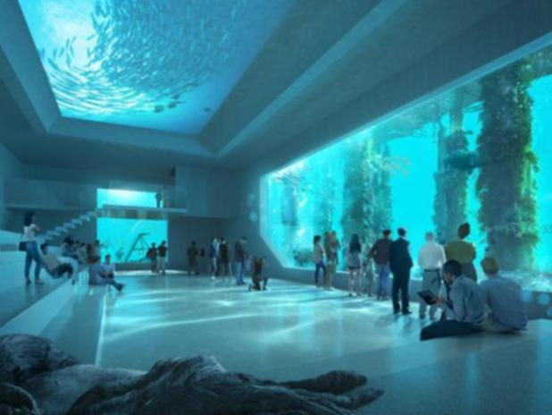 The ocean floor perspective of The Rocks design for the new AUDC.