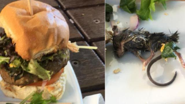 Bruce Blackburn claims he bit into his burger and found the mouse.