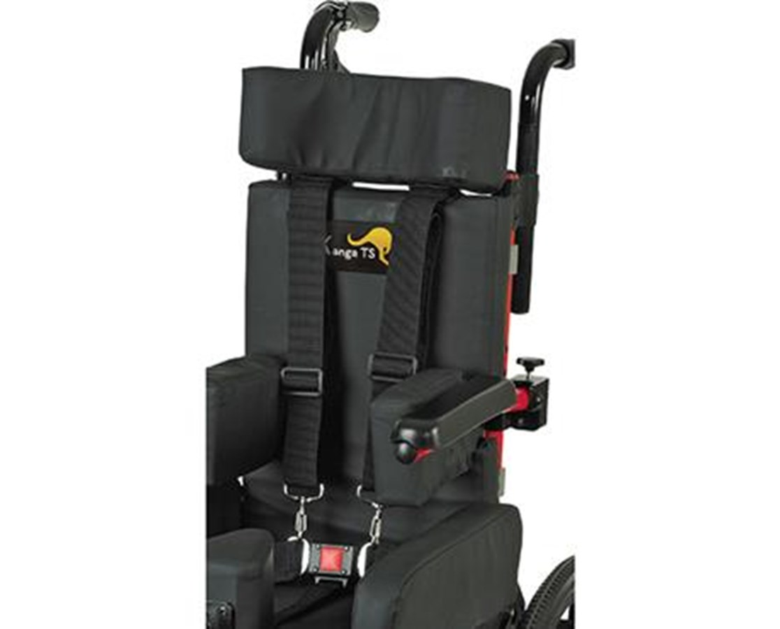 wheelchair harness hanging chair for room velcro positioning elsavadorla