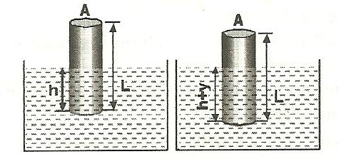 show that motion of cylinder floating in the liquid is