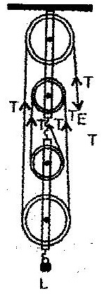 i draw a labelled diagram of a block and tackle system of
