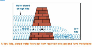 explain the working of tidal energy power plant with a