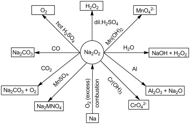 s-Block Element (Alkali and Alkaline Earth Metals