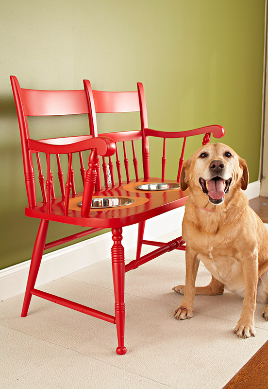Decorating Ideas Making a PetFriendly Home  Traditional