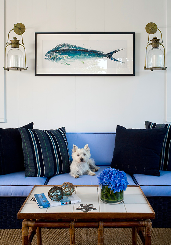 blue sofa living room ideas leather and ottoman set decorating ideas: making a pet-friendly home | traditional ...