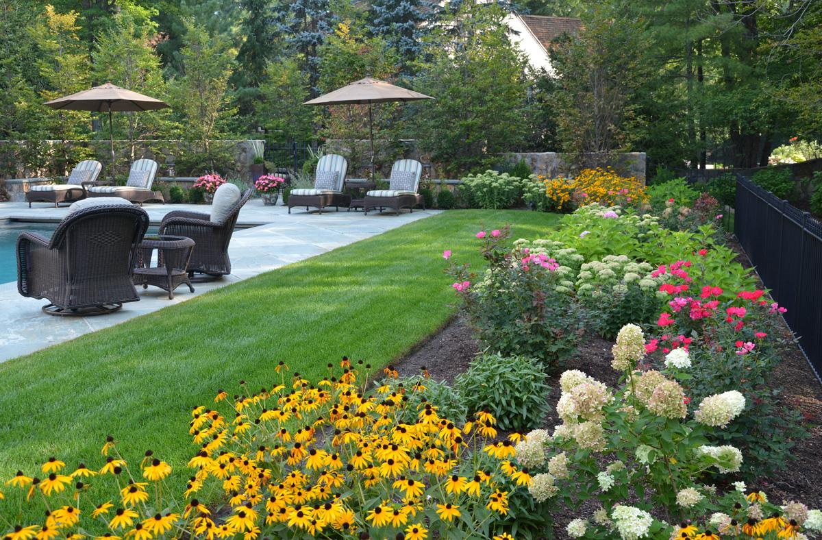 plan colorful perennial garden