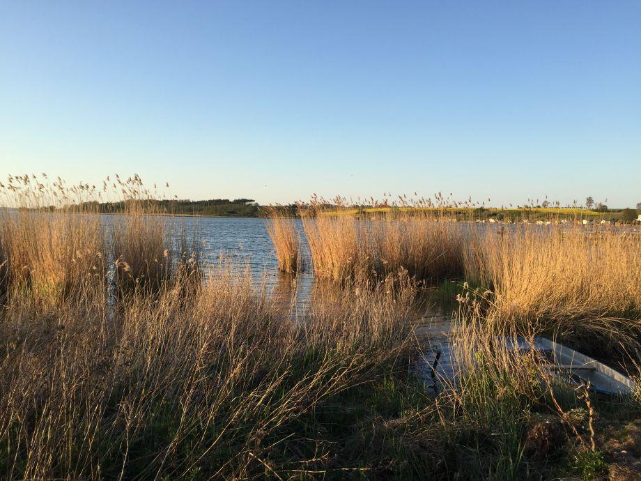 Ferienwohnung in der Residenz am Balmer See Usedom  Herr