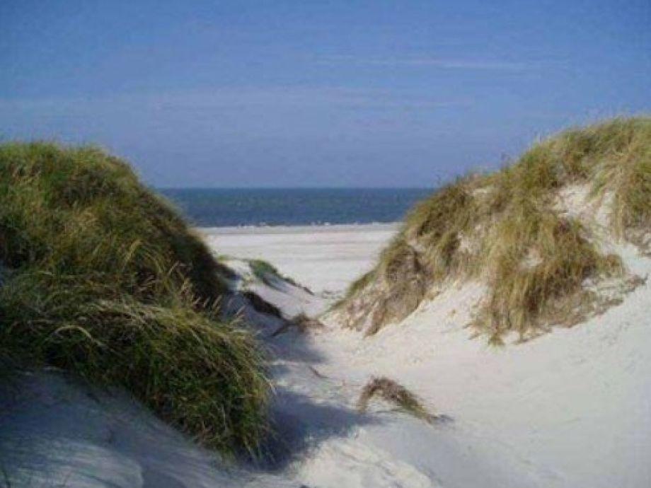 Ferienwohnung Cottage am Watt Nordsee Nordfriesische Inseln Amrum  Frau Wenke Hornung