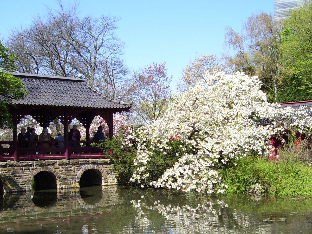 Japanischer Garten Köln Japanischer Garten In Leverkusen Erft