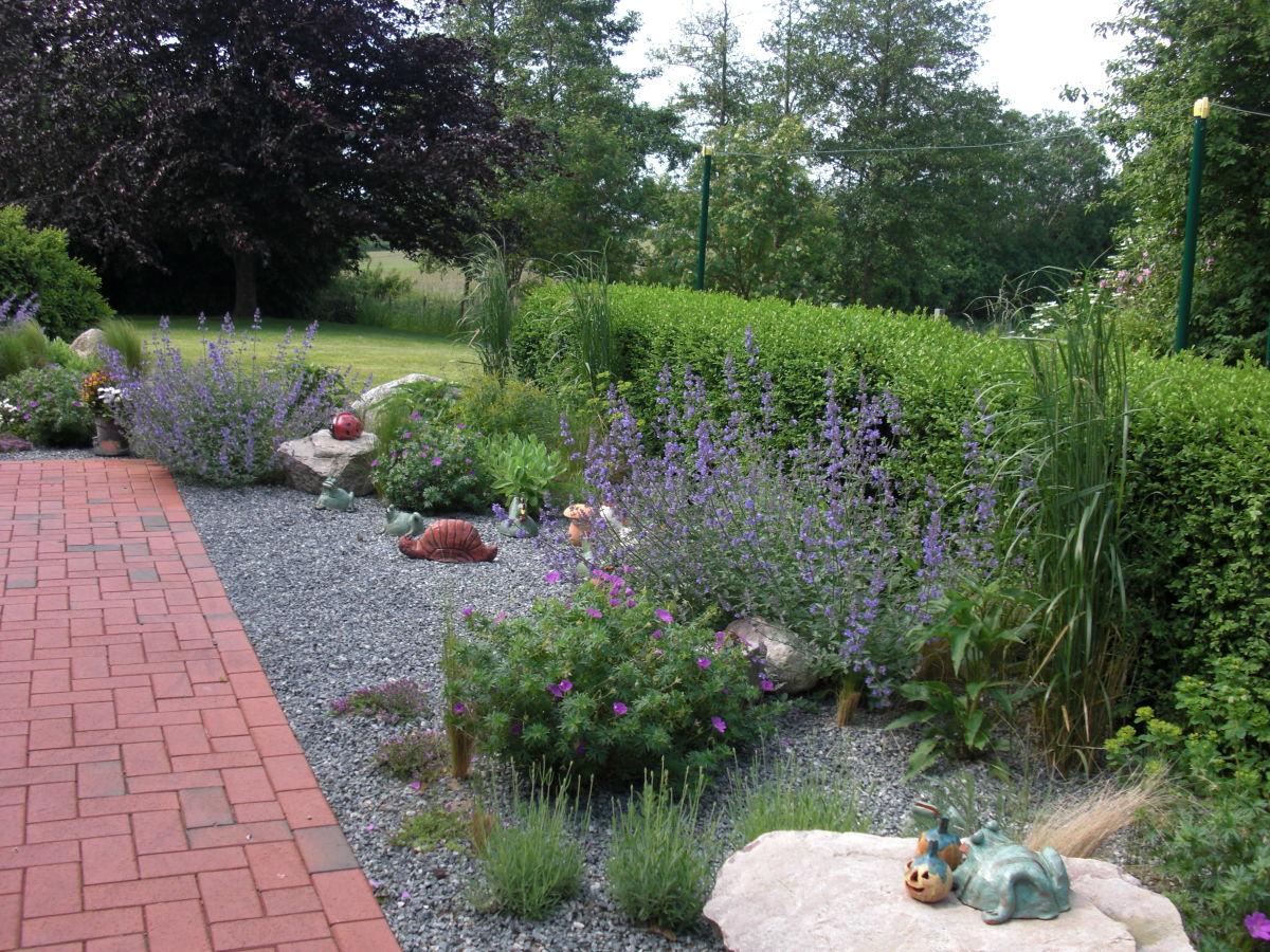Steingarten Graser Mein Steingarten 1 Foto Bild Pflanzen Pilze