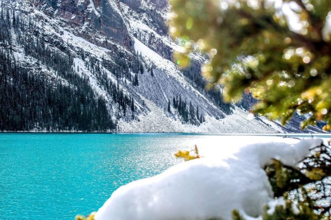 Banff National Park in the winter