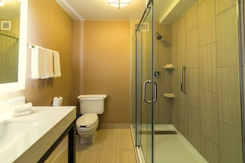 Holiday Inn Chicago Countryside Lagrange Reviews