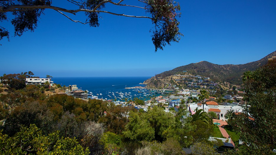 Catalina Island Vacations 2017 Package Amp Save Up To 603