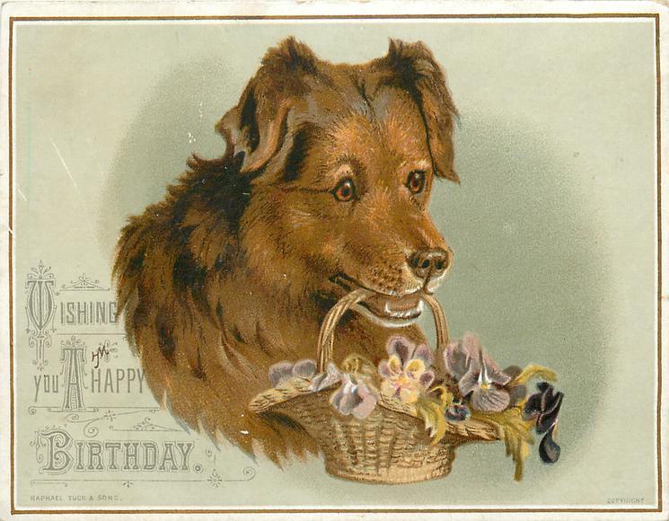 Dog Holds Basket Of Flowers In Its Mouth TuckDB Ephemera