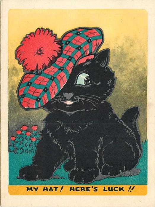 MY HAT HERES LUCK black cat wears large Scottish tam