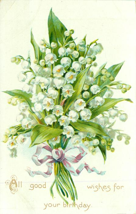 ALL GOOD WISHES FOR YOUR BIRTHDAY Bunch Of Lilies Of The Valley TuckDB Postcards